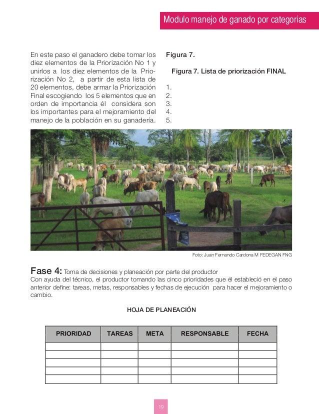 Modulo manejo de ganado por categorias  19  En este paso el ganadero debe tomar los  diez elementos de la Priorización No ...