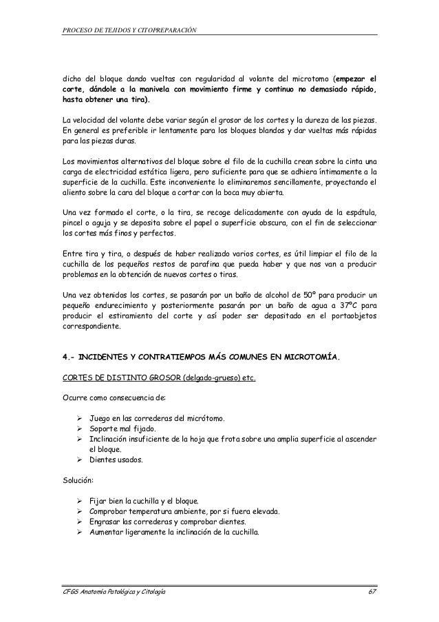 Vistoso Poder Judicial En Una Hoja De Destello Adorno - hojas de ...