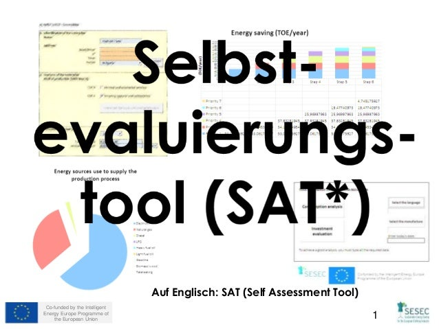 Co-funded by the Intelligent  Energy Europe Programme of  Auf Englisch: SAT (Self Assessment Tool)  the European Union 1
