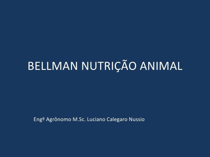 BELLMAN NUTRIÇÃO ANIMAL Engº Agrônomo M.Sc. Luciano Calegaro Nussio
