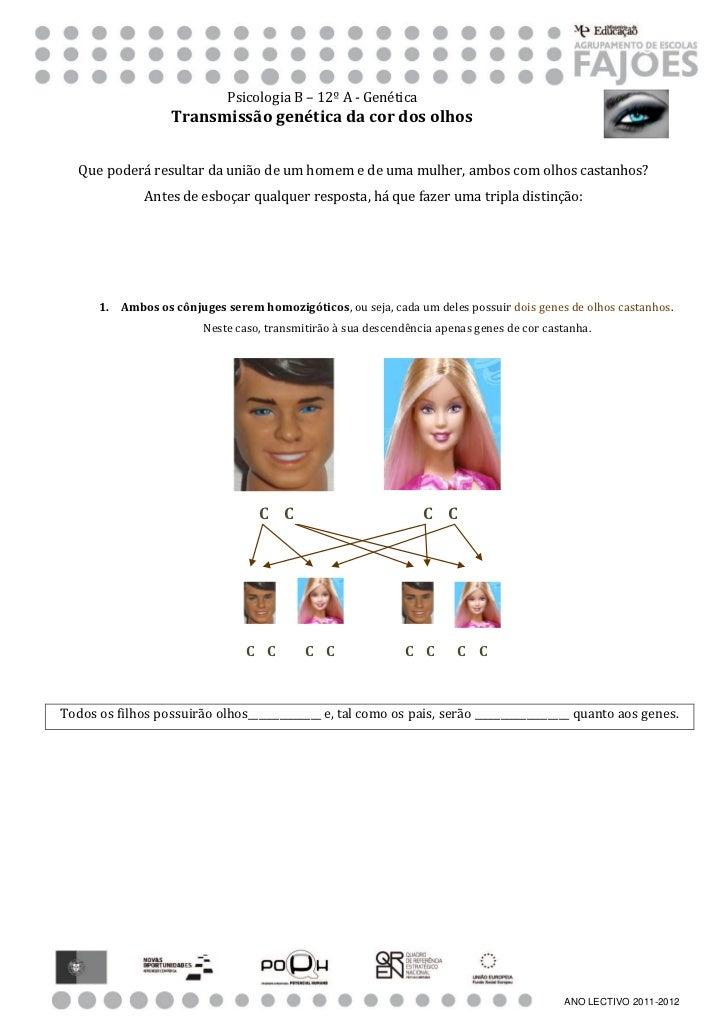 Psicologia B – 12º A - Genética                   Transmissão genética da cor dos olhos   Que poderá resultar da união de ...