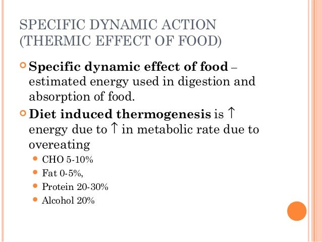 Thermic Effect Of Food  Kcal Diet