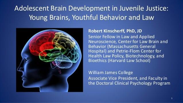 Robert Kinscherff, Adolescent Brain Development in ...