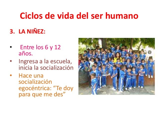 Ciclo Vital Del Ser Humano On Emaze: Ciclo De Vida Del Ser Humano Imagui 15 Ciclo De Vida Del