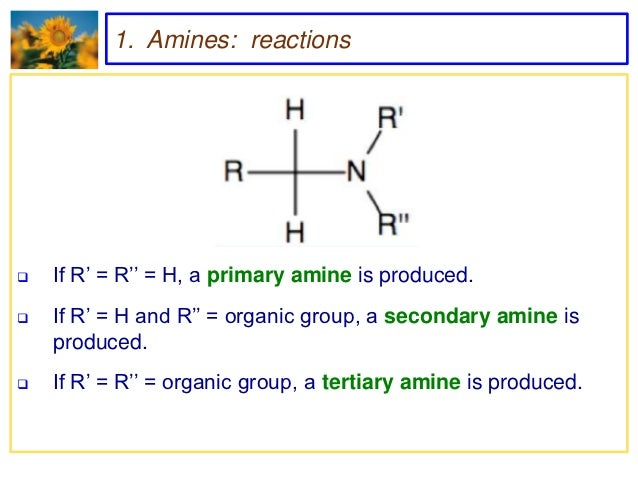 Amines and Amides
