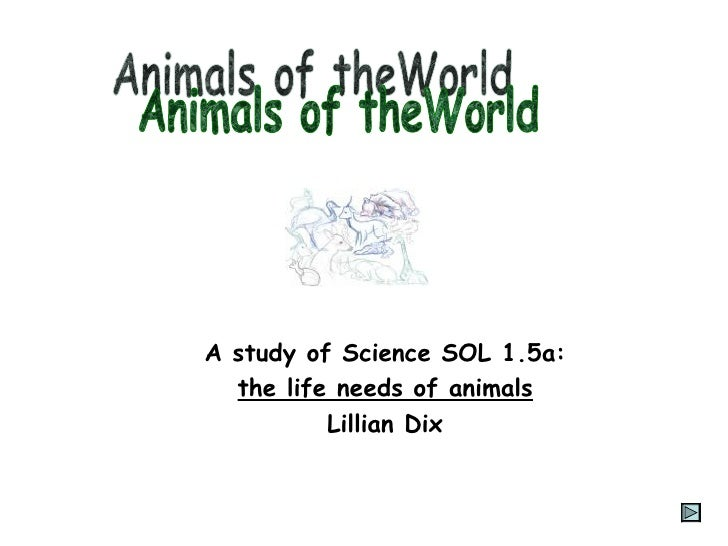 A study of Science SOL 1.5a: the life needs of animals Lillian Dix Animals of theWorld