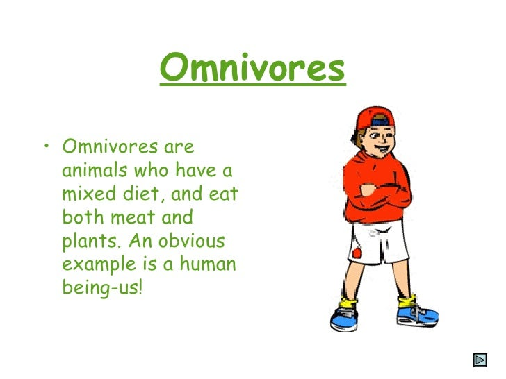 Examples of omnivores.