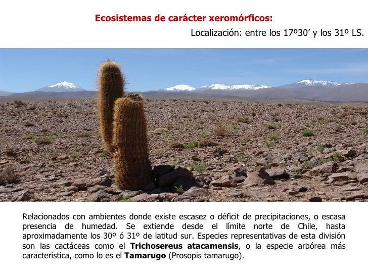 Ecosistemas de carácter xeromórficos:                                             Localización: entre los 17º30' y los 31º...