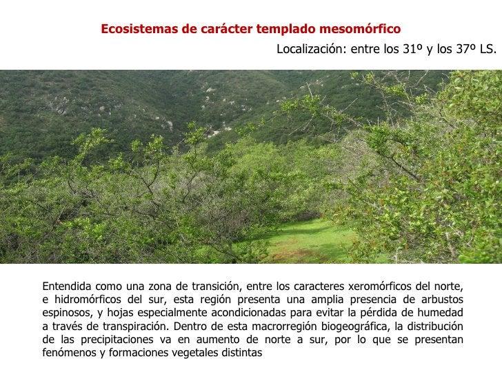 Ecosistemas de carácter templado mesomórfico                                               Localización: entre los 31º y l...