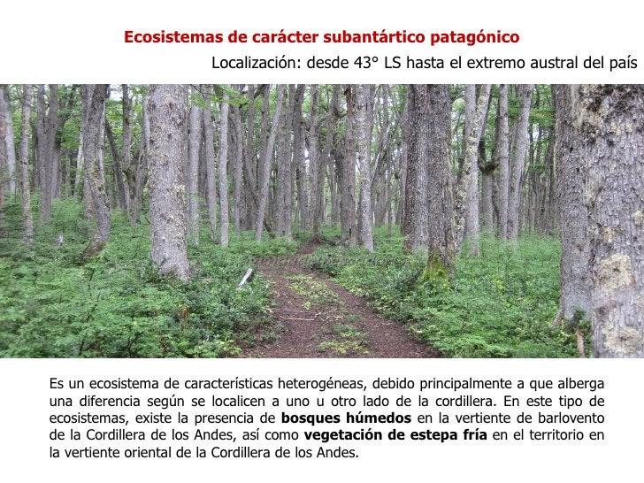 Ecosistemas de carácter subantártico patagónico                        Localización: desde 43° LS hasta el extremo austral...