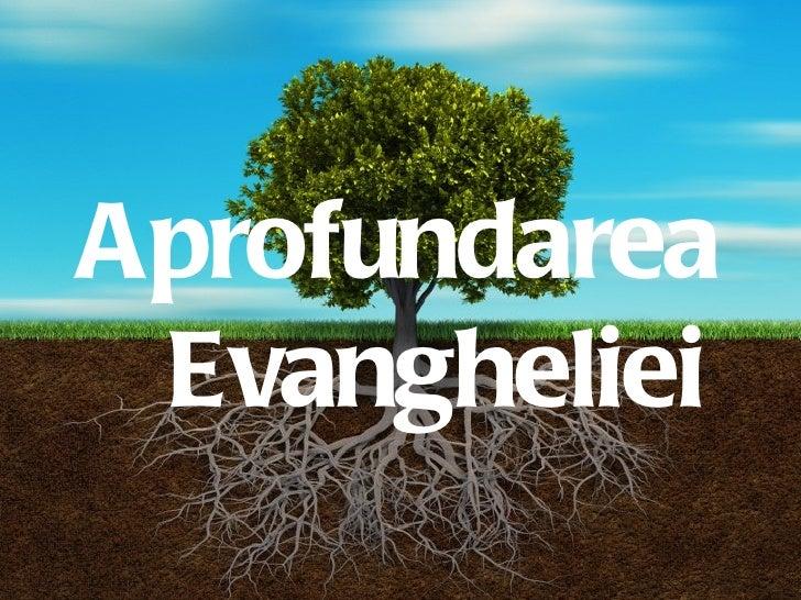 Aprofundarea Evangheliei          1