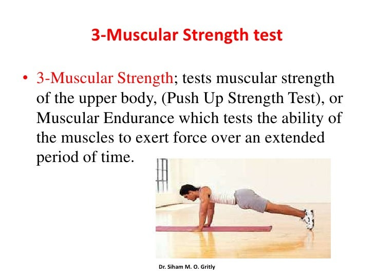 upper body tests of muscular strength Strength tests upper body strength endurance test aim - to determine the muscular endurance of the triceps, pectoral and deltoid muscles equipment - stopwatch directions.