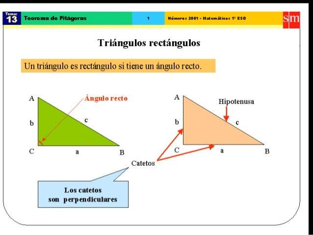 15. teorema de pitágoras