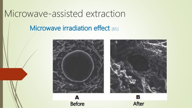 microwave assisted extraction technique for oil extraction This technique has been applied in several fields such as analytical chemistry and biology heat reflux extraction, mechanochemical-assisted extraction, microwave-assisted extraction, instant controlled pressure drop extraction (dic (such as oil from olive cake see at right) soxhlet.