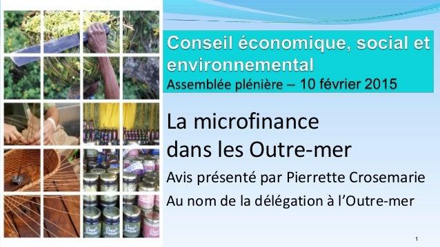 La microfinance dans les Outre-mer Avis présenté par Pierrette Crosemarie Au nom de la délégation à l'Outre-mer Pierrette 1