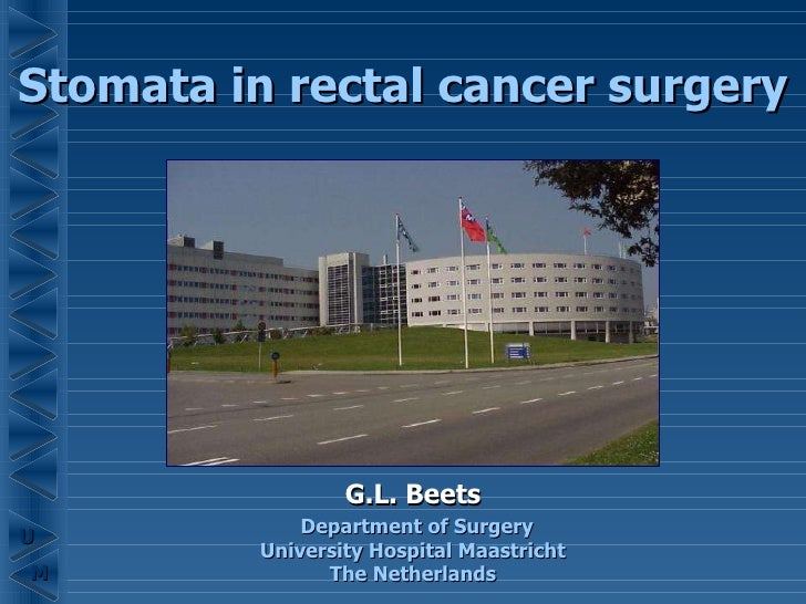 Stomata in rectal cancer surgery G.L. Beets Department of Surgery University Hospital Maastricht The Netherlands