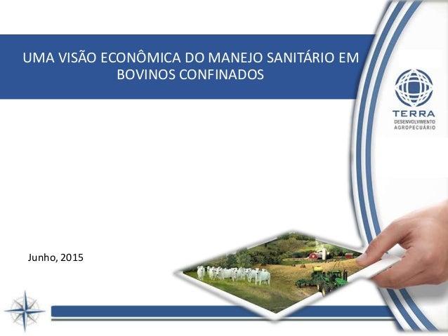 UMA VISÃO ECONÔMICA DO MANEJO SANITÁRIO EM BOVINOS CONFINADOS Junho, 2015