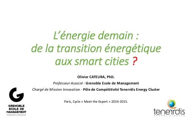 150507 cateura olivier smart grids cities energie tenerrdis grenoble em
