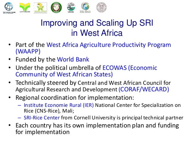 the success of the west african monetary system waemu Cea 43rd annual conference thursday, may 28 - sunday  efficiencies in west african economic and monetary  in the financial system of the waemu.