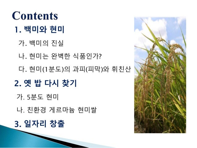 게르마늄 현미쌀(호뉴통상-안국)-150814 Slide 2