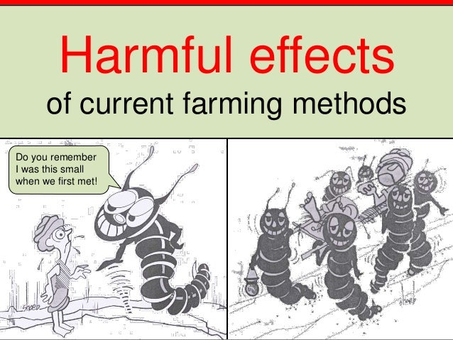 Harmful effects of current farming methods Do you remember I was this small when we first met!
