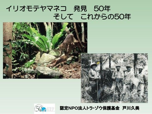 イリオモテヤマネコ 発見 50年 そして これからの50年 認定NPO法人トラ・ゾウ保護基金 戸川久美