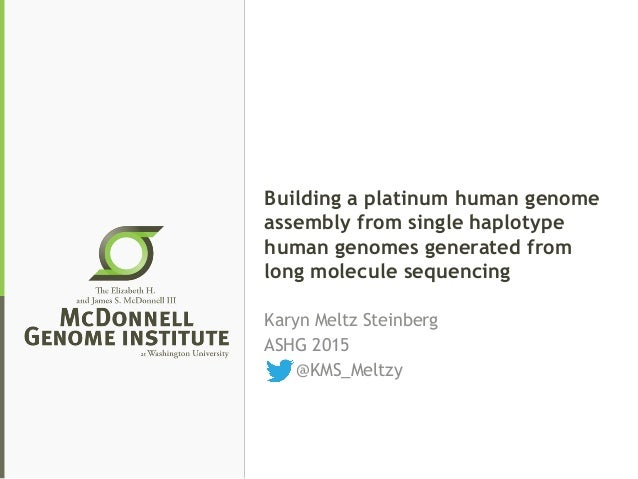 Building a platinum human genome assembly from single haplotype human genomes generated from long molecule sequencing Kary...