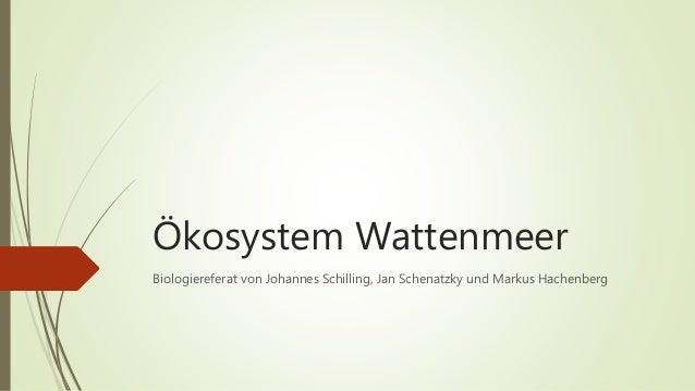 Ökosystem Wattenmeer Biologiereferat von Johannes Schilling, Jan Schenatzky und Markus Hachenberg