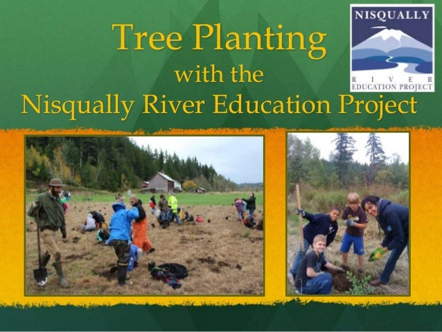 Tree Planting with the Nisqually River Education Project