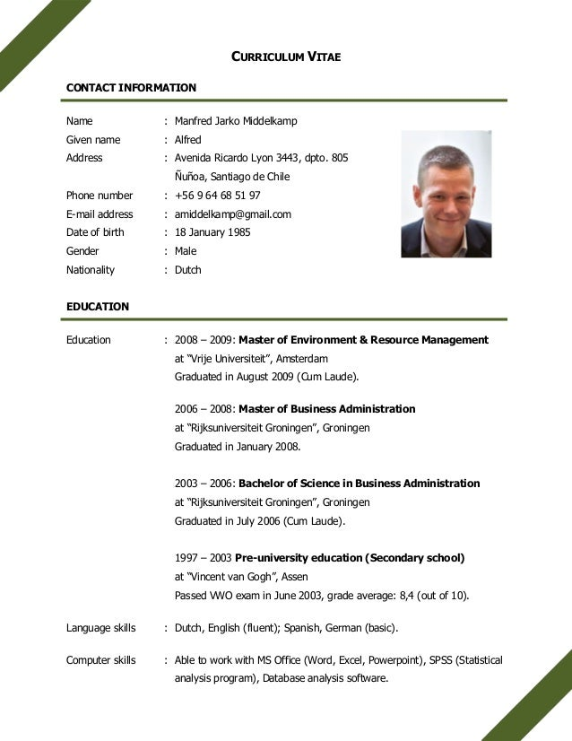 english cv mj middelkamp