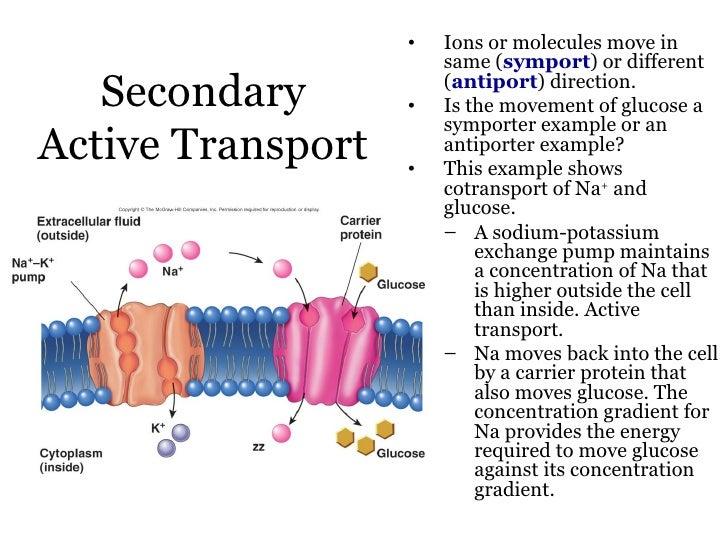 151 Transport