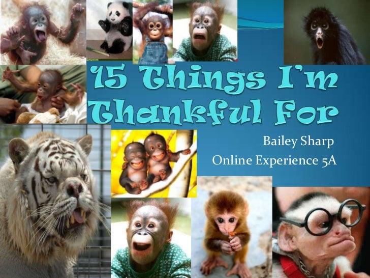 Bailey SharpOnline Experience 5A
