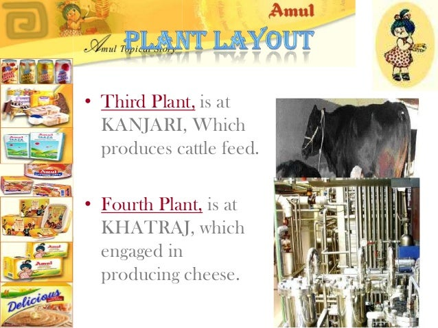 Marketing Report of the Amul Company, Including the Swot, Tows, Ifsa, Efas Essay