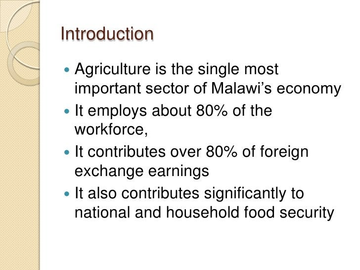 Introduction Agriculture is the single most  important sector of Malawi's economy It employs about 80% of the  workforce...