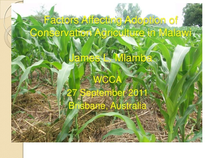 Factors Affecting Adoption ofConservation Agriculture in Malawi        James L. Mlamba             WCCA       27 September...