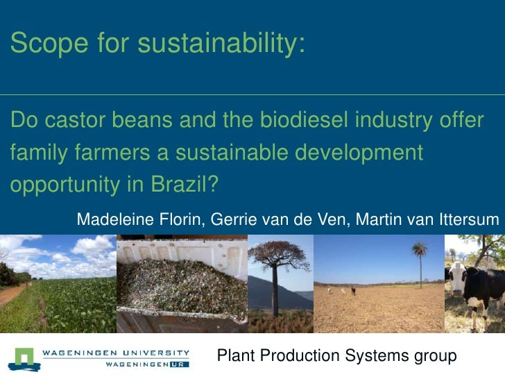 Scope for sustainability:Do castor beans and the biodiesel industry offerfamily farmers a sustainable developmentopportuni...