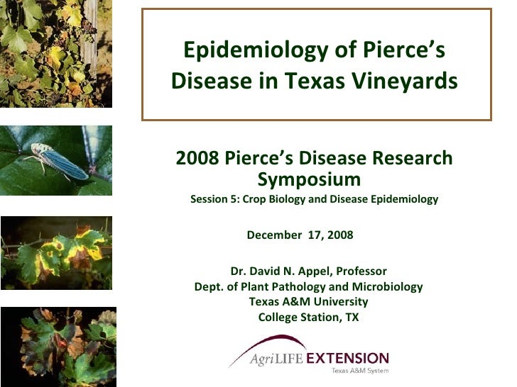 Epidemiology of Pierce's Disease in Texas Vineyards 2008 Pierce's Disease Research Symposium  Session 5: Crop Biology and ...
