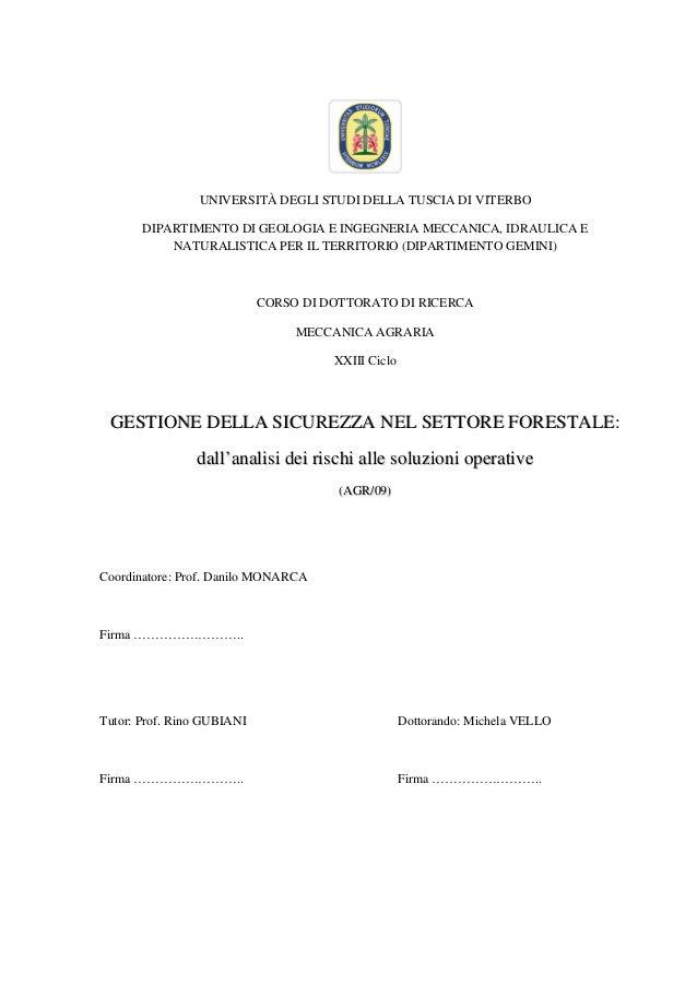 UNIVERSITÀ DEGLI STUDI DELLA TUSCIA DI VITERBO DIPARTIMENTO DI GEOLOGIA E INGEGNERIA MECCANICA, IDRAULICA E NATURALISTICA ...