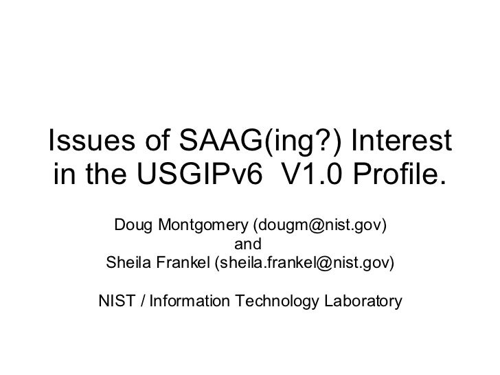 Issues of SAAG(ing?) Interest in the USGIPv6  V1.0 Profile. Doug Montgomery (dougm@nist.gov) and  Sheila Frankel (sheila.f...