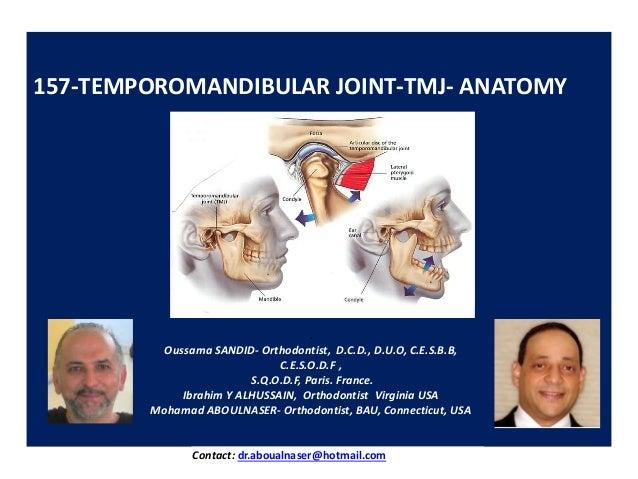 157-TEMPOROMANDIBULAR JOINT-TMJ- ANATOMY . Oussama SANDID- Orthodontist, D.C.D., D.U.O, C.E.S.B.B, C.E.S.O.D.F , S.Q.O.D.F...