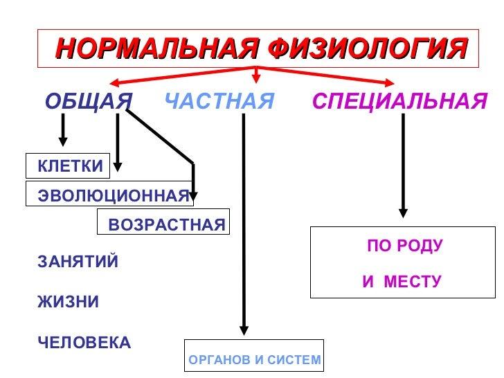 НОРМАЛЬНАЯ ФИЗИОЛОГИЯ <ul><li>ОБЩАЯ  ЧАСТНАЯ   СПЕЦИАЛЬНАЯ </li></ul><ul><li>КЛЕТКИ </li></ul><ul><li>ЭВОЛЮЦИОННАЯ </li></...