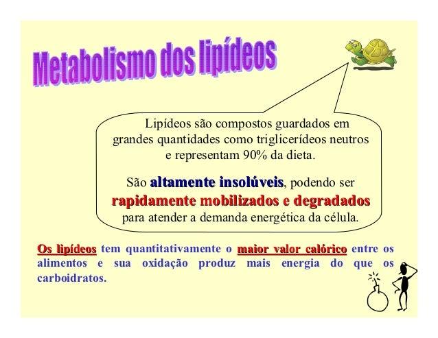 Lipídeos são compostos guardados em             grandes quantidades como triglicerídeos neutros                      e rep...