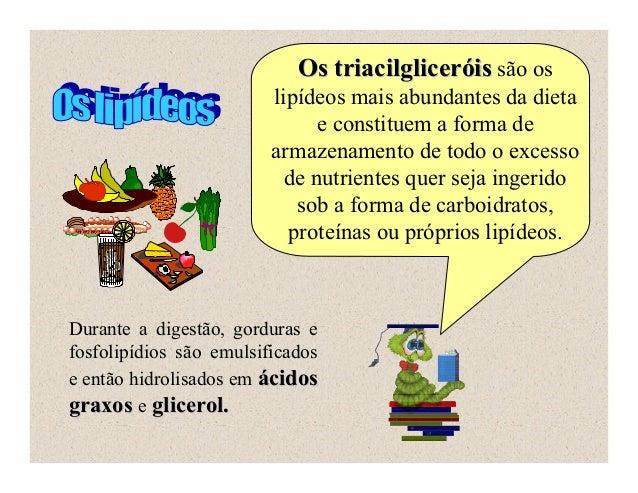 Os triacilgliceróis são os                         lipídeos mais abundantes da dieta                               e const...