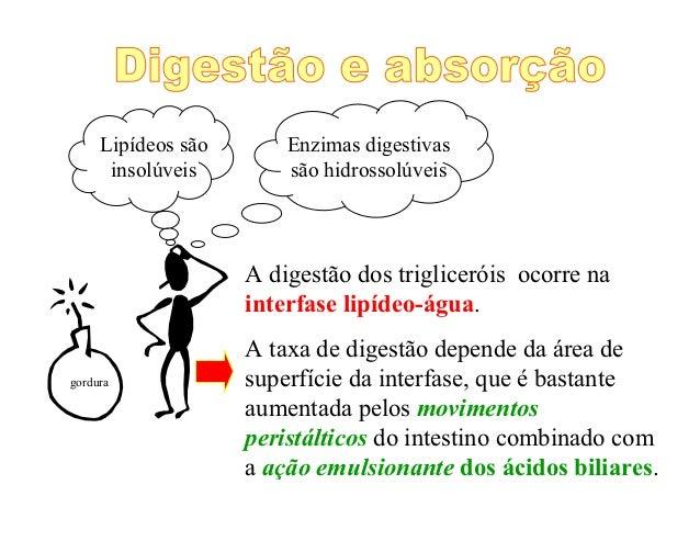 Lipídeos são       Enzimas digestivas      insolúveis        são hidrossolúveis                    A digestão dos triglice...
