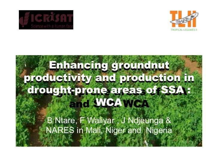 Enhancing groundnut productivity and production in  drought-prone areas of SSA :  drought prone areas of SSA              ...