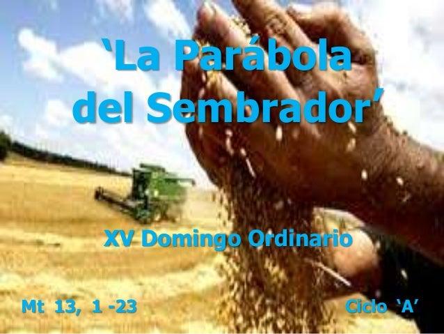 'La Parábola del Sembrador' Mt 13, 1 -23 Ciclo 'A' XV Domingo Ordinario