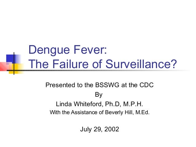 Presented to the BSSWG at the CDC By Linda Whiteford, Ph.D, M.P.H. With the Assistance of Beverly Hill, M.Ed. July 29, 200...