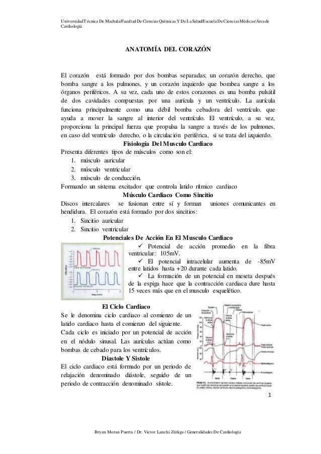 Generalidades de cardiovascular