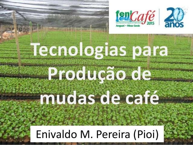 Tecnologias para Produção de mudas de café Enivaldo M. Pereira (Pioi)