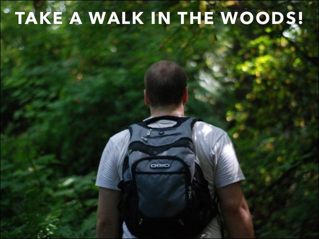TAKE A WALK IN THE WOODS!
